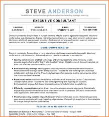 It Executive Resume Examples Resume Examples Qualifications Professional Skills Summary
