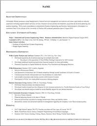 Best Resume Format 2013 by Resume Template Academic Word Best Photos Of Cv Within 81