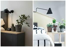 plante dans la chambre plante chambre nuit dans uneucher verte feng shui la pour newsindo