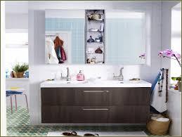 Ikea Furniture Ideas by Bathroom Remarkable Medicine Cabinets Ikea For Bathroom Furniture