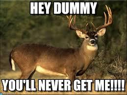 Deer Meme - hey dummy deer meme on memegen