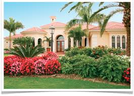12 landscaping tips for a florida friendly yard pest control