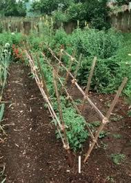 lekkert med leca gardening garden structures pinterest