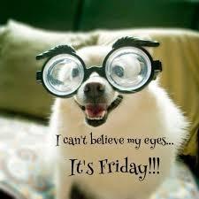 Finally Friday Meme - friday pinteres