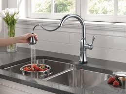 Reviews On Kitchen Faucets by Finding The Best Delta Kitchen Faucet Kitchen Remodel Styles