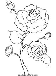 111 dessins de coloriage fleur à imprimer
