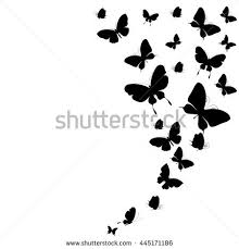 butterfly design stock images royalty free images vectors