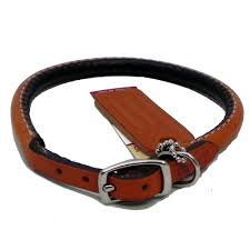 circle t leather collar rolled 22 inch collars