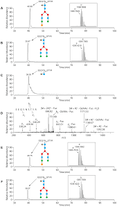 the n glycan glycoprotein deglycosylation complex gpd from