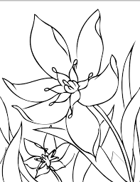 printable 36 cool flower coloring pages 7714 cool flower