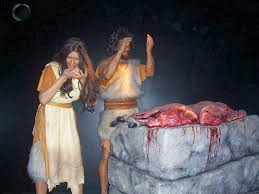 god perform the first sacrifice in genesis 3 21