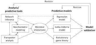 processes free full text mathematical modeling of microbial