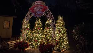 dollywood christmas lights 2017 best places for christmas pictures at dollywood dollywood insiders