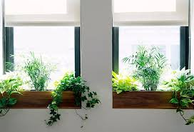 indoor windowsill planter the sill terrain planting a window box indoor window boxes