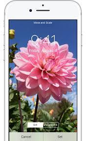 apple update wallpaper change your iphone wallpaper apple support