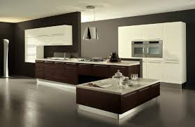 nice modern kitchens marvelous modern kitchen cabinets design in interior renovation