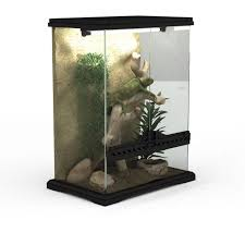 lizard terrarium 3d model 3ds max files free download modeling