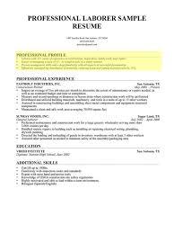 how to write summary for resume job summary example
