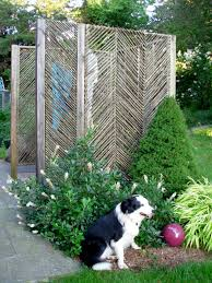7 ways to keep pets safe in the summer hgtv u0027s decorating