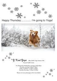 australian shepherd yoga yknotyoga hashtag on twitter