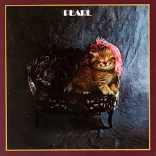 cat photo album 96 best the kitten covers images on classic album