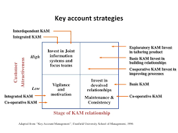 key account template account plan template