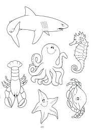 imagenes animales acuaticos para colorear animalitos para colorear animales acuaticos animados para niaos para