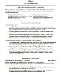 Finance Executive Resume Samples by Senior Executive Resume Examples
