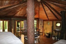 chambre d hote dans les arbres le nid dans l arbre maisons d hôtes de caractère maisondhote com