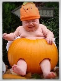 Pumpkin Meme - funny amazing hilarious halloween pumpkins and meme s for a good