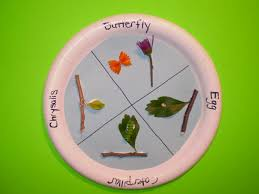 butterfly theme butterfly unit butterfly crafts activities