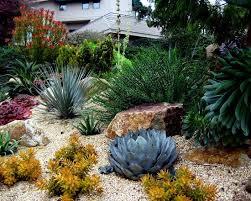 Desert Landscape Ideas by 375 Best Xeriscape Designs Images On Pinterest Landscaping Ideas