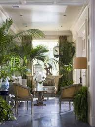 tropical living rooms with indoor plants and birdcage tropical
