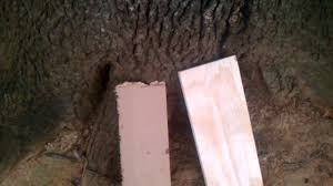 Mdf For Kitchen Cabinets Mdf Vs Plywood Youtube