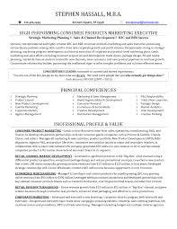 cover letter vp sales resume sample resume vp sales executive vp