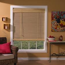 window treatments for casement windows dragon fly