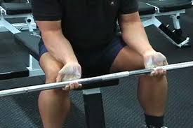 Best Forearm - best forearm workout the top 5 forearm exercises