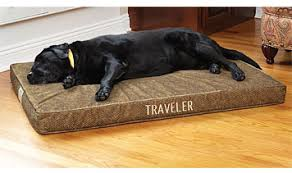 therapeutic dog bed therapeutic memory foam dog bed orvis uk