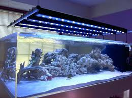 led aquarium lights for reef tanks led lighting for aquarium led l reef tank aokpharm info