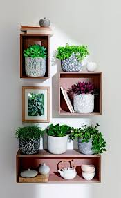 Wall Plant Holders Best 20 Indoor Planters Ideas On Pinterest U2014no Signup Required