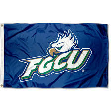 Florida Flag History Florida Gulf Coast University Eagles Fgcu Flag 3x5 Banner Ebay