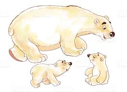 polar bear color page at the zoo cute arctic animals polar bear coloring page