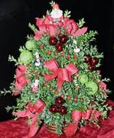 christmas flowers newport ri bellevue florist boxwood christmas