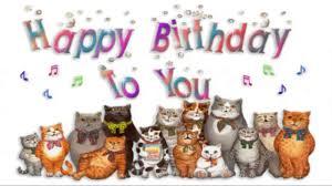 happy birthday singing cats sing happy birthday