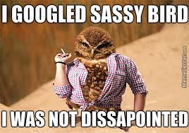 Sassy Cat Meme - what s with this sassy lost child memes best collection of funny