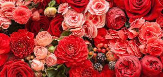 wedding flowers sheffield bouquet delivery weddings funerals birthdays