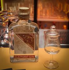 the institute for alcoholic experimentation elephant gin a cure