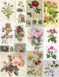 Pretty Types Of Flowers - i want a tattoo of a vintage looking flower permanent ink