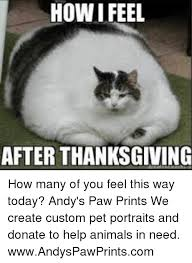 Create Custom Memes - how i feel after thanksgiving how many of you feel this way today