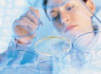 Sample Biotech Resume by Cvs Biotechnology Jobs